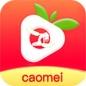 草莓丝瓜污app下载免费视频